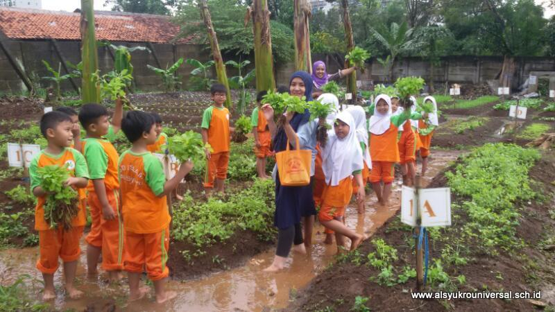 Gardening SD