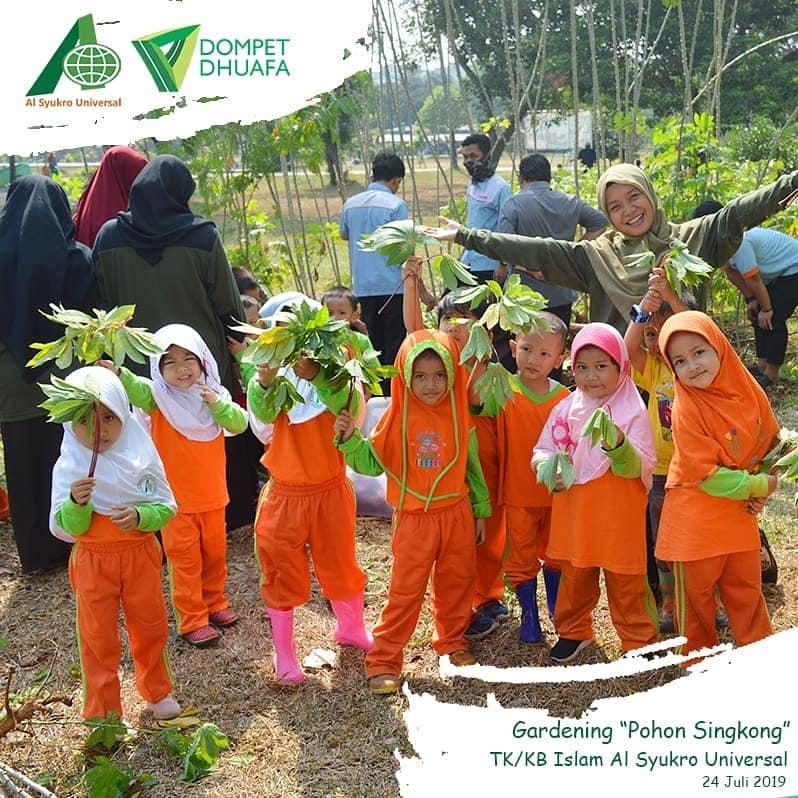 Gardening Pohon Singkong