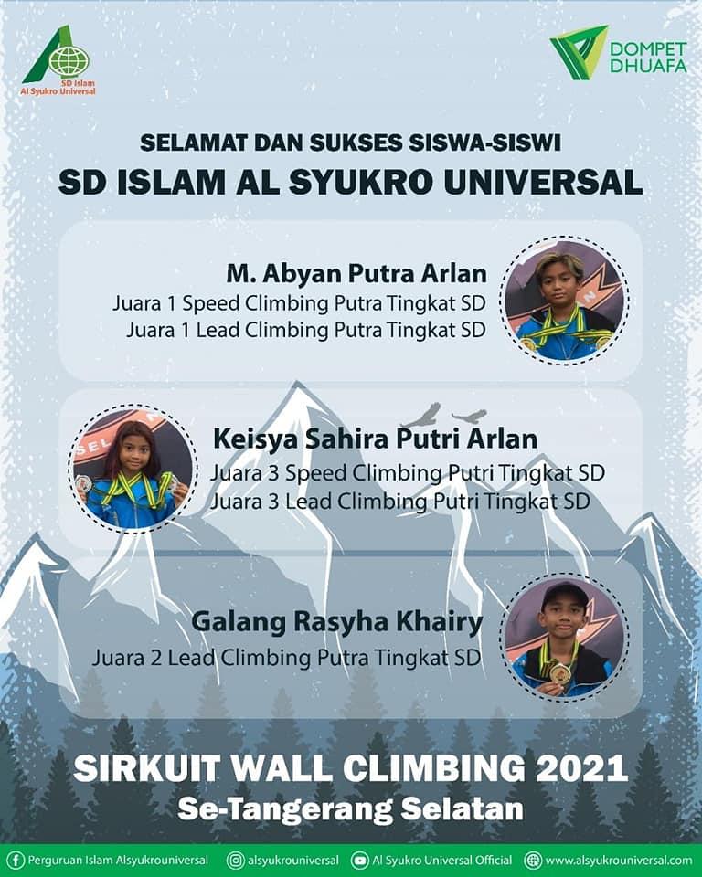 alsyukrouniversal-wall-climbing.jpg